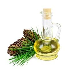 производство кедрового масла как бизнес