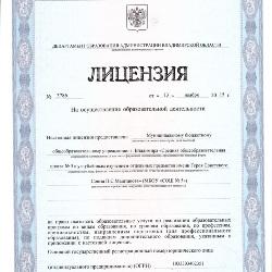 Лицензия на образовательную деятельность для ИП
