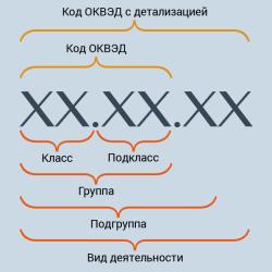 Коды видов деятельности для ип
