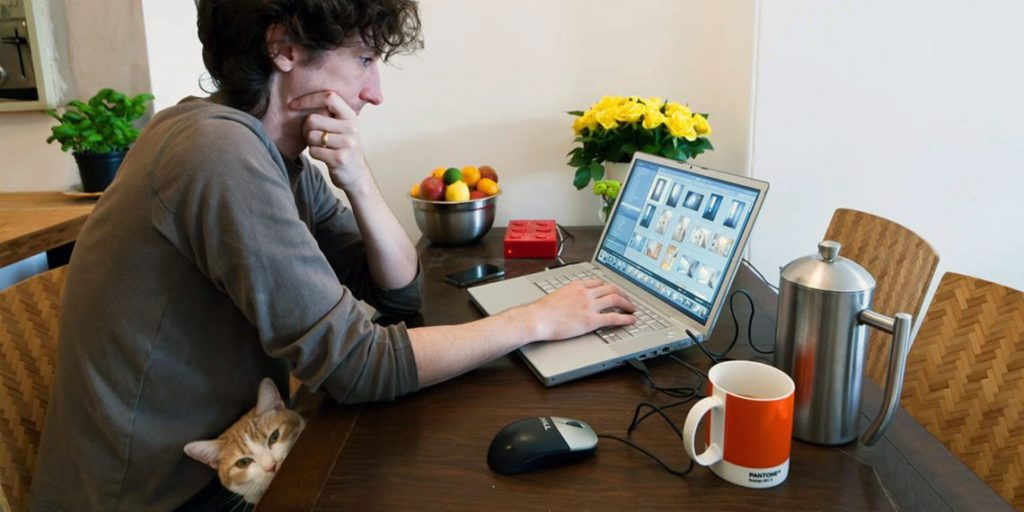 Фрилансер за ноутбуком и кот