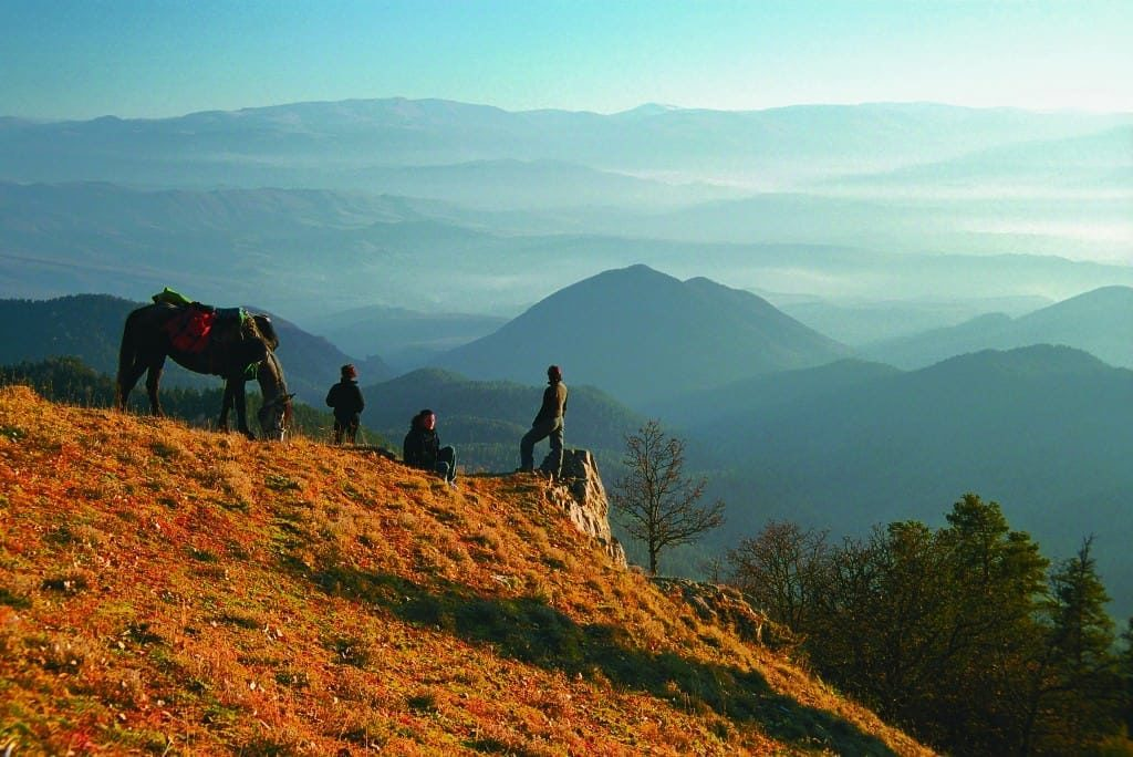Кони в горах