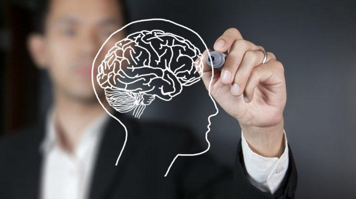 Мужчина рисует мозг