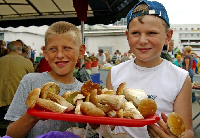 Продажа грибов
