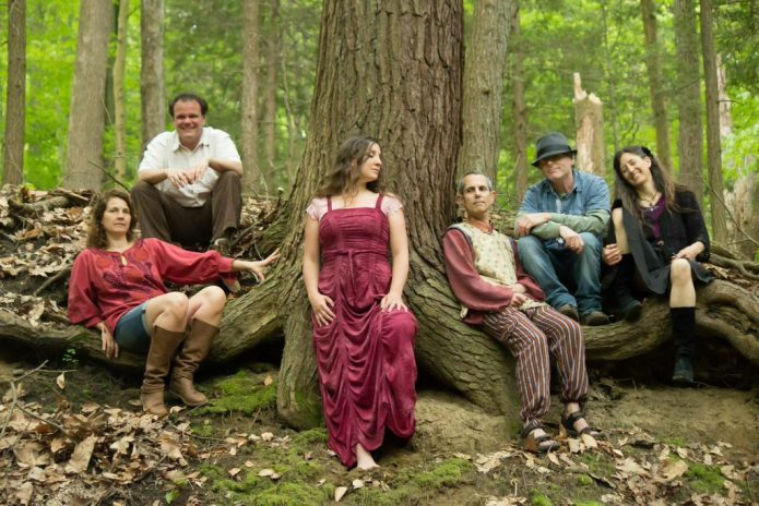 люди в лесу