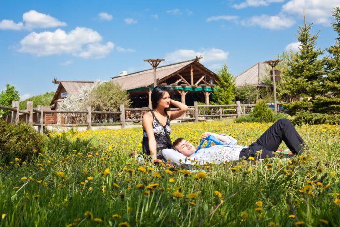 Пара на одуванчиковом поле в деревне