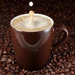 бизнес на кофейных аппаратах