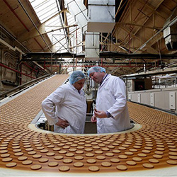 Производство печений бизнес план бизнес идеи 10