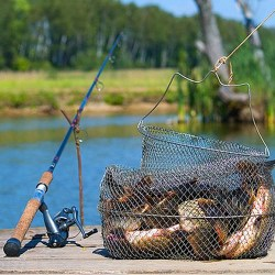 Платная рыбалка как бизнес
