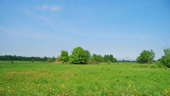 Перепродажа земельных участков