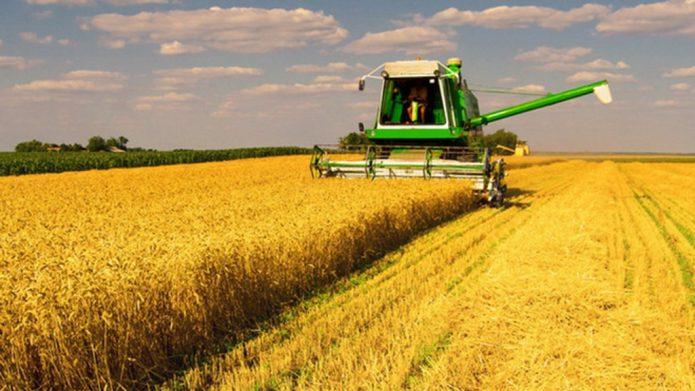 Сельское хозяйство как одна из ниш в списке хороших для ведения бизнеса в 2018
