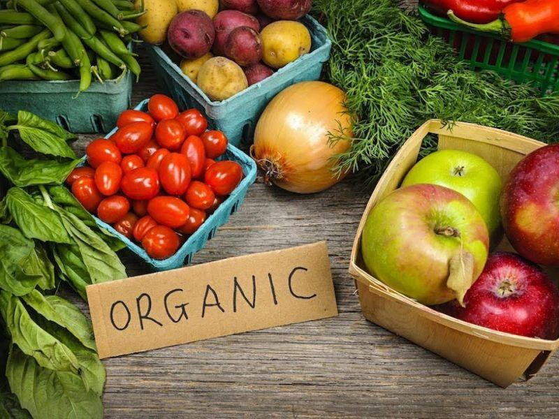 Какие растения выгоднее всего выращивать на продажу: пять наиболее подходящих вариантов