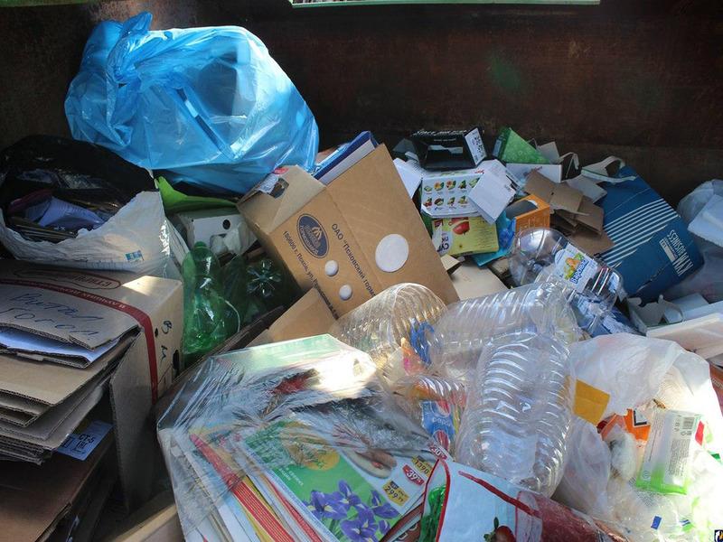 Как заработать на мусоре без вложений: проверенные способы