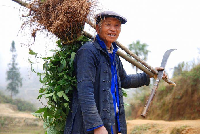 Крестьянин в Китае