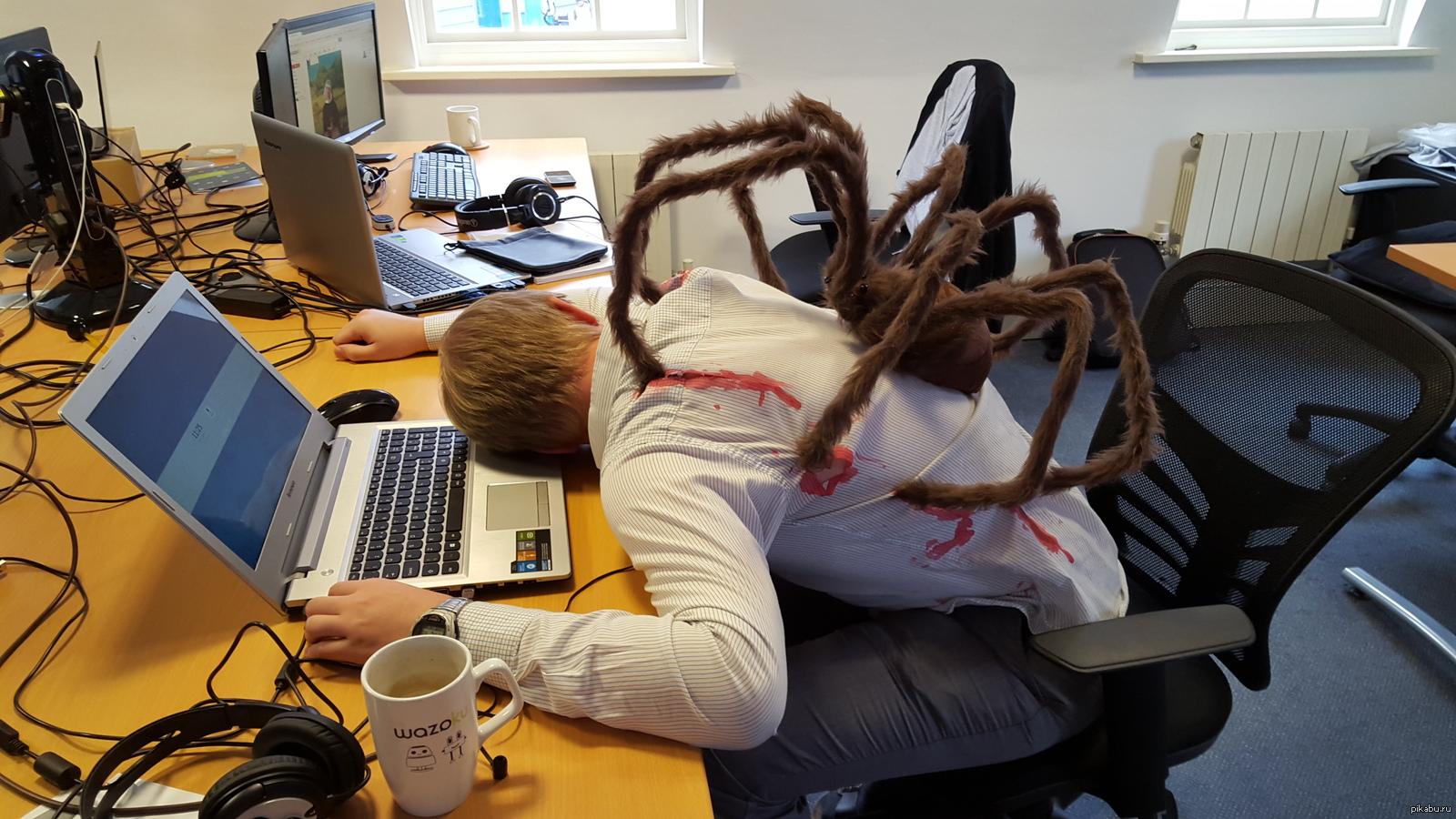 смешные фото про работу в офисе словам