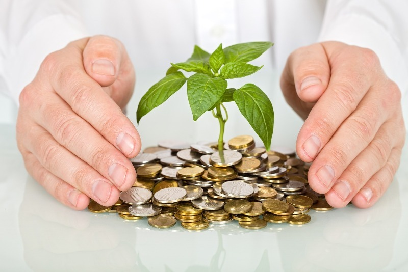 5 странных, но прибыльных способов вложения денег