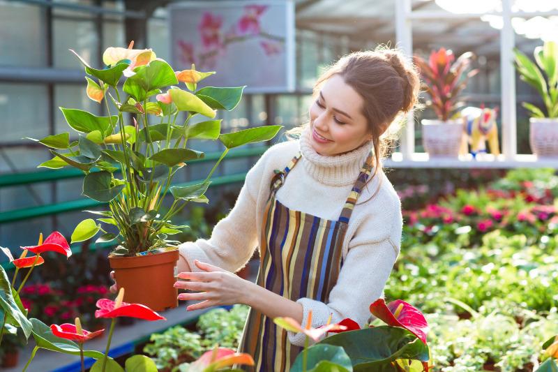 Если любите растения, то на этом можно построить бизнес: 6 идей, как зарабатывать хорошие деньги